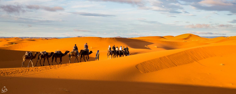 Maroc - Phần 2 : Leo núi Atlas, cưỡi lạc đà trên sa mạc Sahara