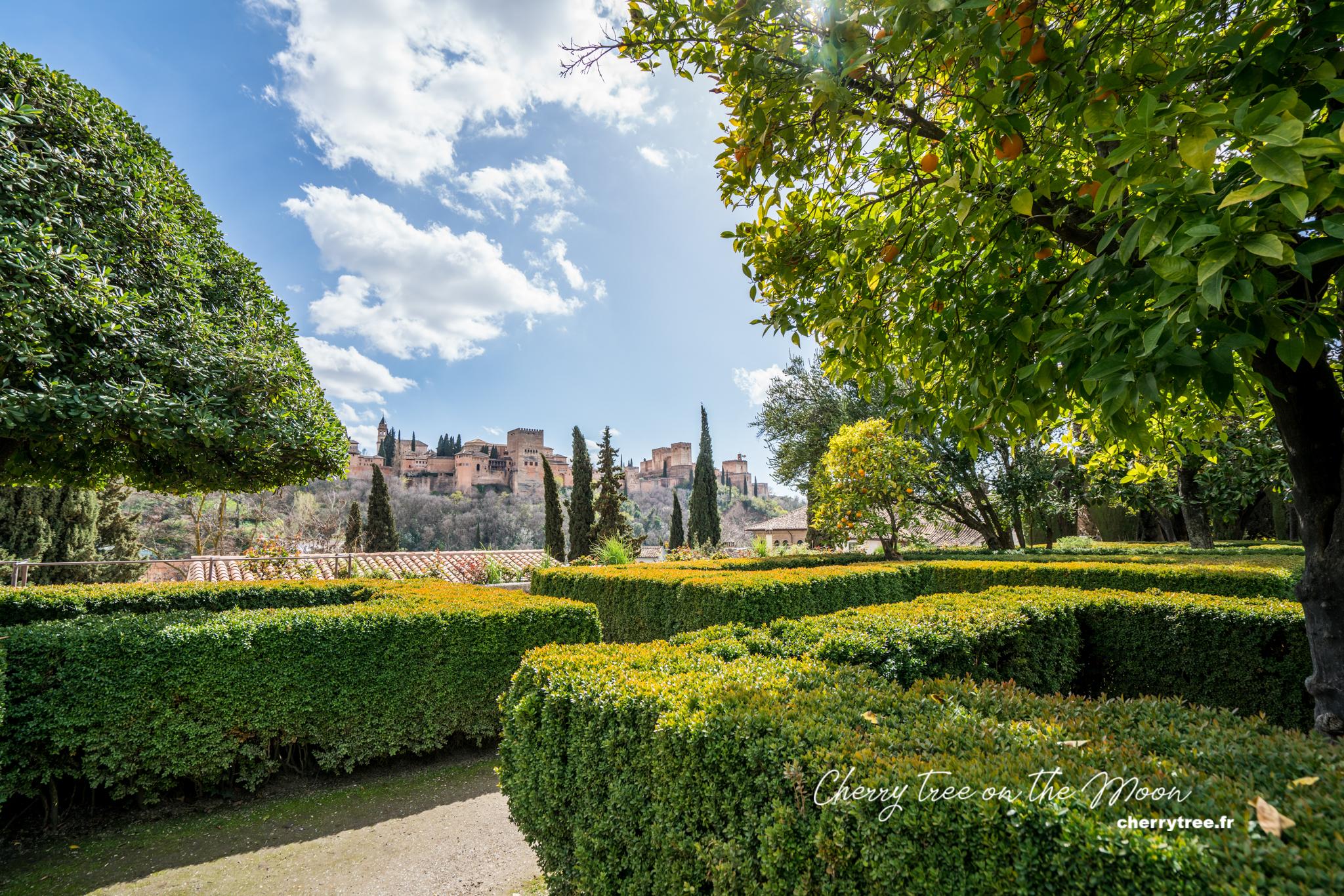 Vườn cam của Casa del Chapiz và Alhambra ở phía xa