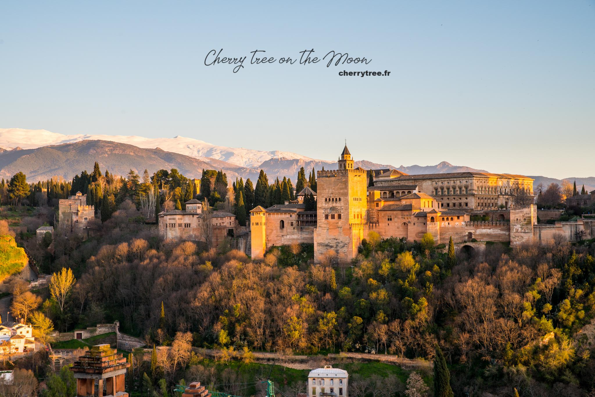 Alhambra nhìn từ Mezquita Mayor de Granada , một trong những view point đẹp nhất của Granada. Alhambra hiện trên nền xanh của cây cối và màu trắng của tuyết phủ trên dải Sierra Nevada